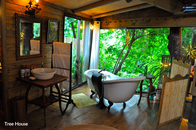 Tree House Greyton Accommodation